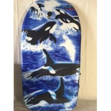 Bodyboard Whale
